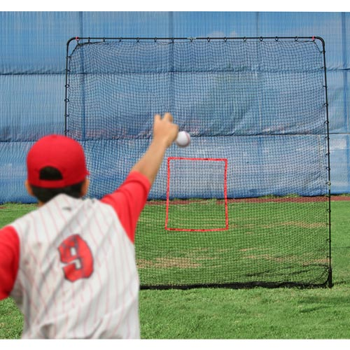 Big League Drop Toss & Big Play Net